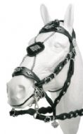 Portuguese display bridle 'Lujo' - single